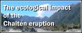 The ecological impact of the Chaitén eruption.